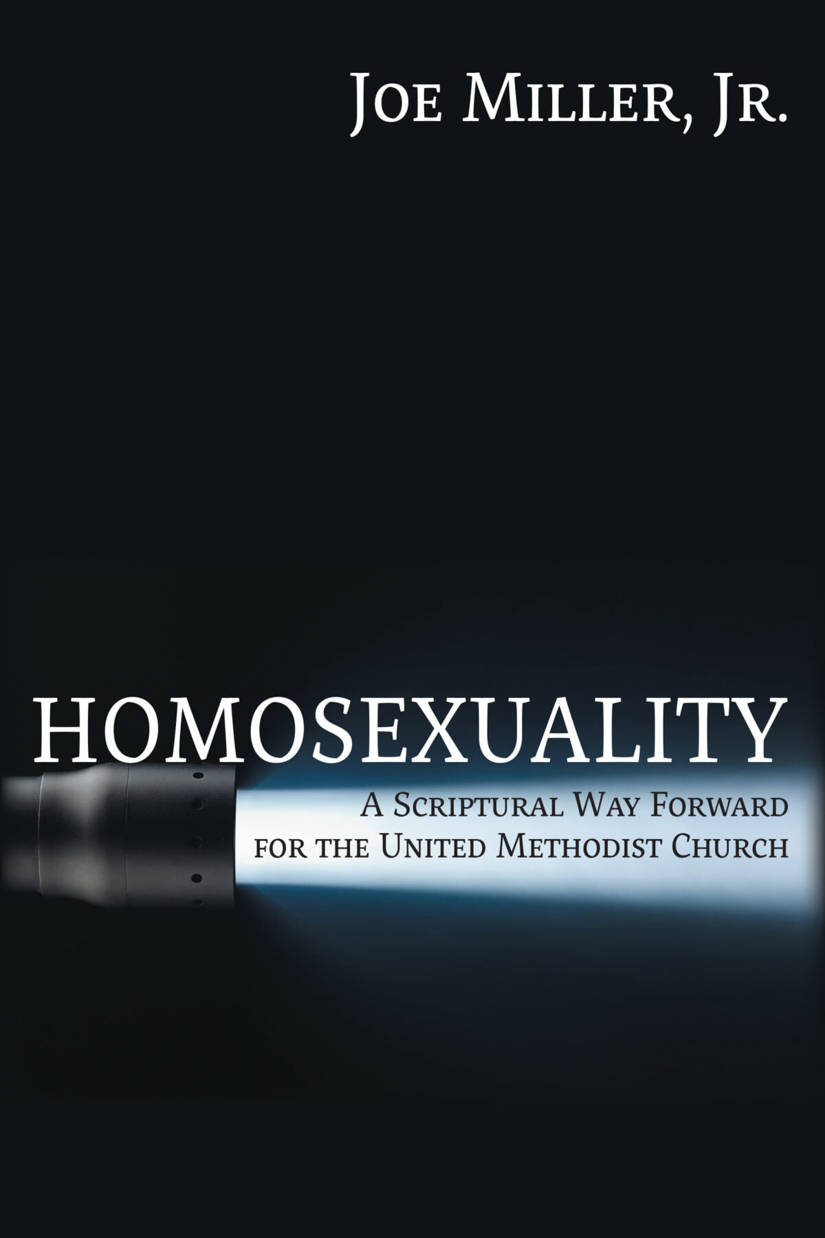 Aer.io ebook: Homosexuality: A Scriptural Way Forward for the United Methodist Church